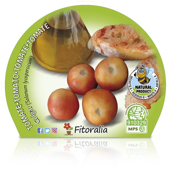 Tomate Colgar M-10,5