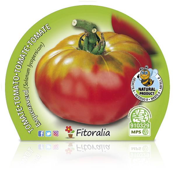 Tomate Esquenaverd M-10,5