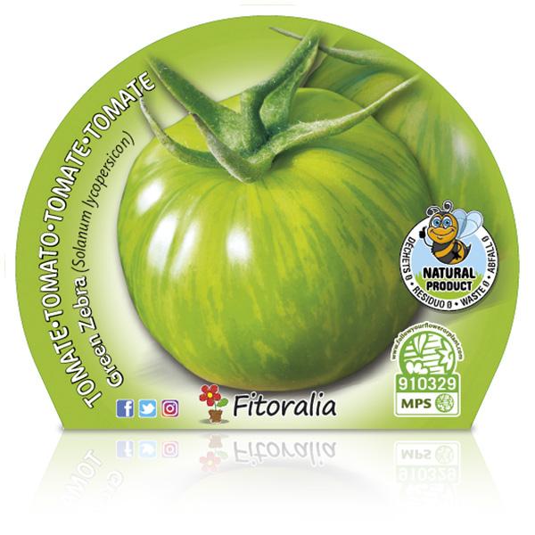 Tomate Green Zebra M-10,5