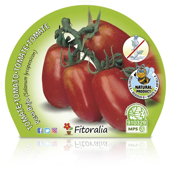 Tomate Pera Mata Baja M-10,5