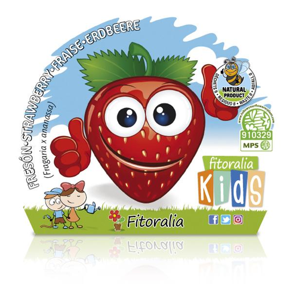 Fresón KIDS M-10,5 Fragaria × ananassa W