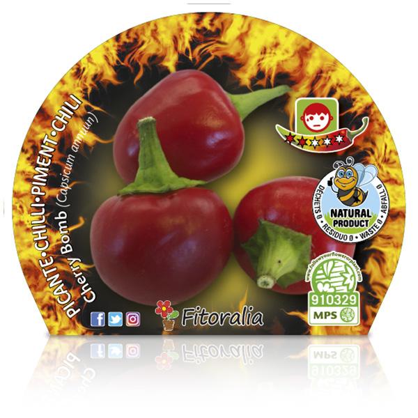 Picante Cherry Bomb M-10,5