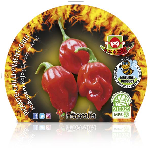 Picante Habanero Rojo M-10,5