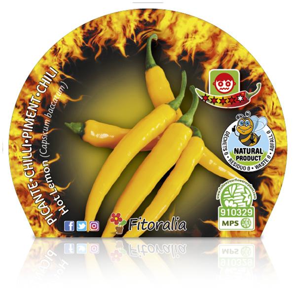 Picante Hot Lemon M-10,5