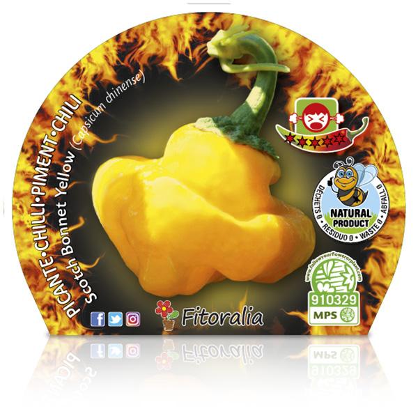 Picante Scotch Bonnet Yellow M-10,5