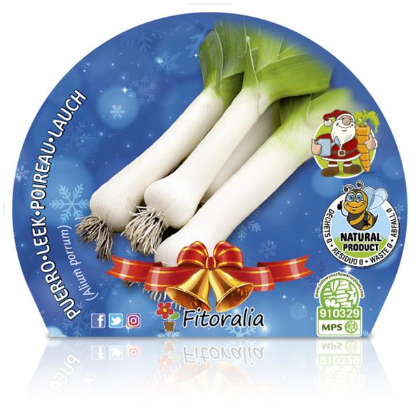 Puerro Navidad M-10,5 Allium porrum