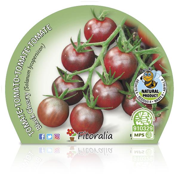Tomate Cherry Black M-10,5