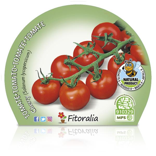 Tomate Cherry Redondo M-10,5
