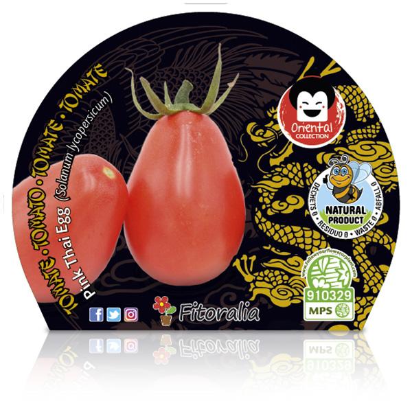 Tomate Pink Thai Egg M-10,5 Solanum lycopersicum W