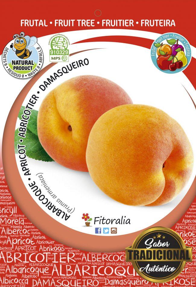 Albaricoque Galta Roja M-25 - Prunus armeniaca