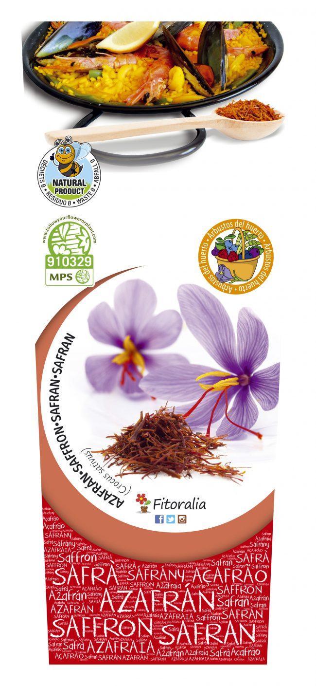 Azafrán 2l Crocus sativus