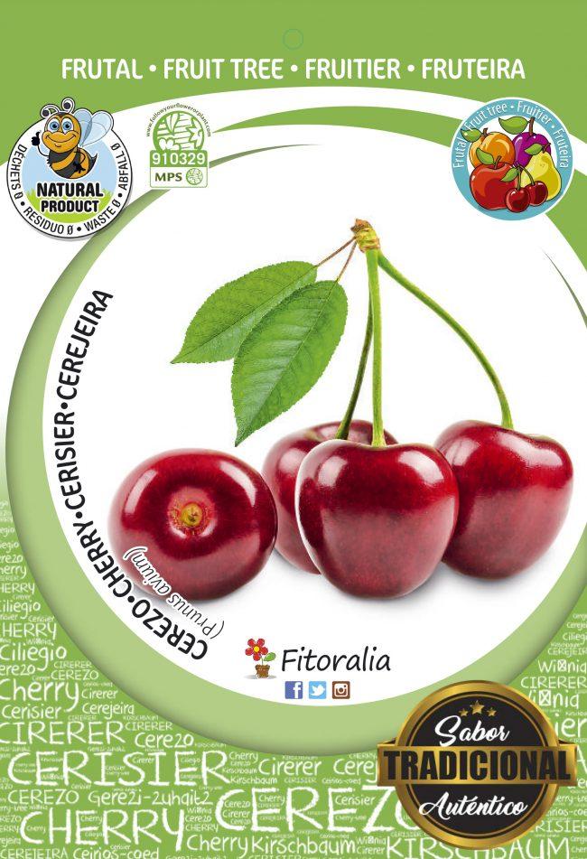 Cerezo Lapins M-25 - Prunus avium