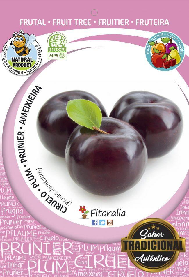 Ciruelo Angeleno M-25 - Prunus domestica