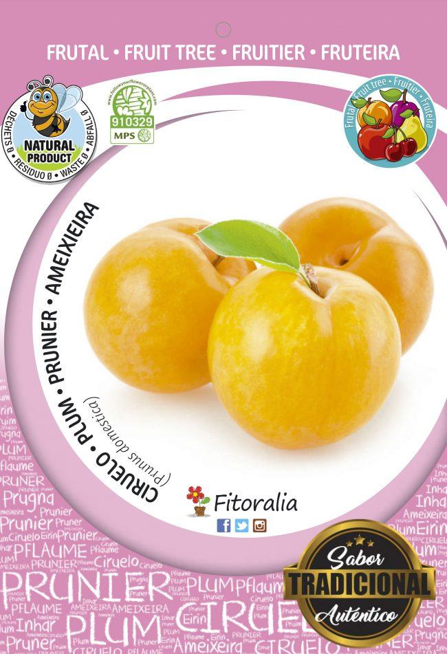 Ciruelo Golden Japan M-25 - Prunus domestica