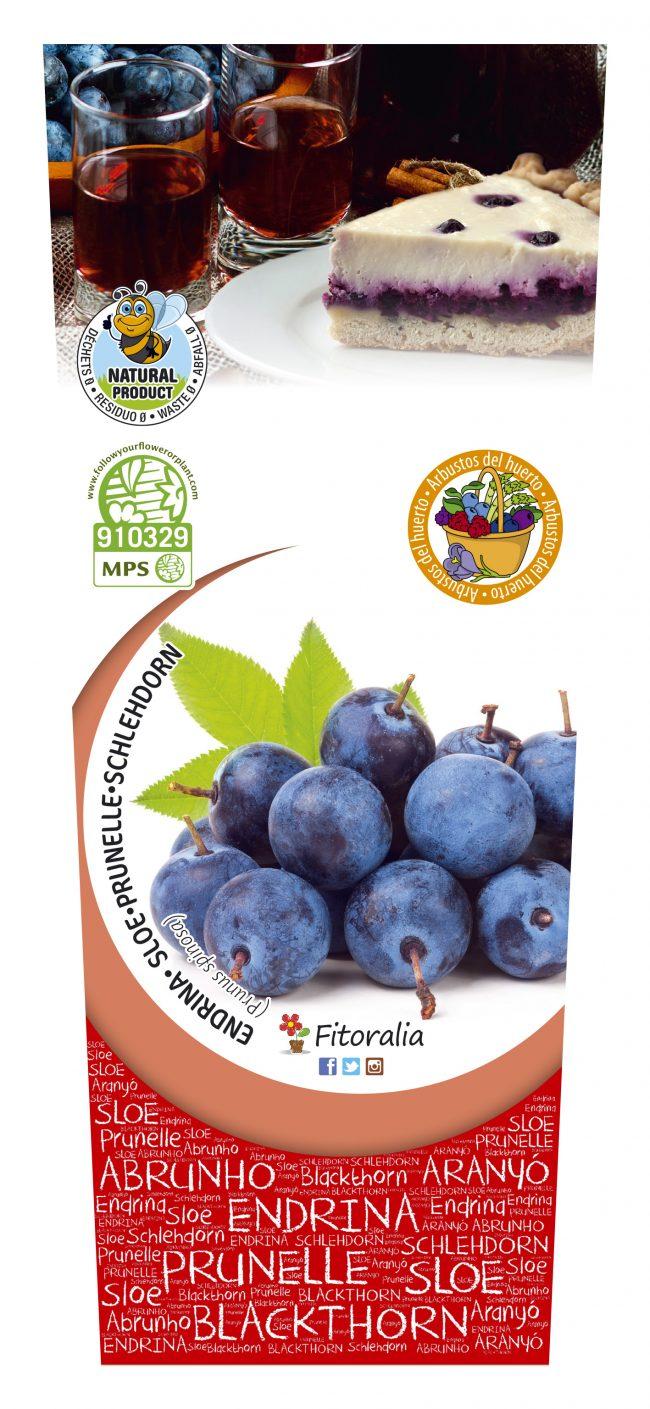 Endrino 2l Prunus spinosa