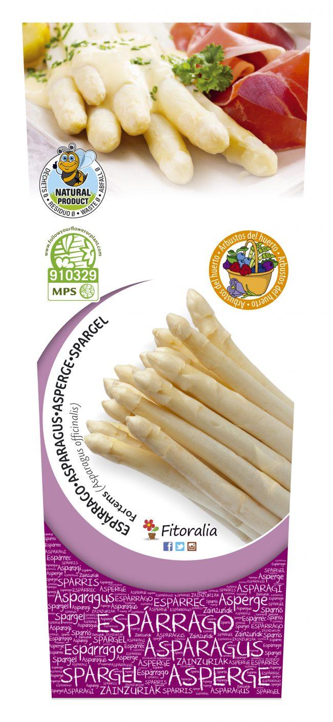 Espárrago Blanco 2l Asparagus officinalis