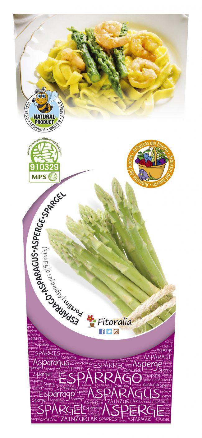 Espárrago Verde 2l Asparagus officinalis