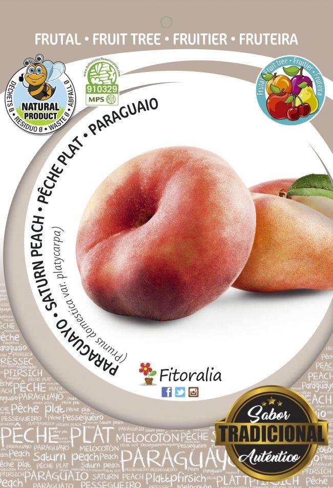 Melocotón Paraguayo Delfín M-25 - Prunus persica var. Platycarpa