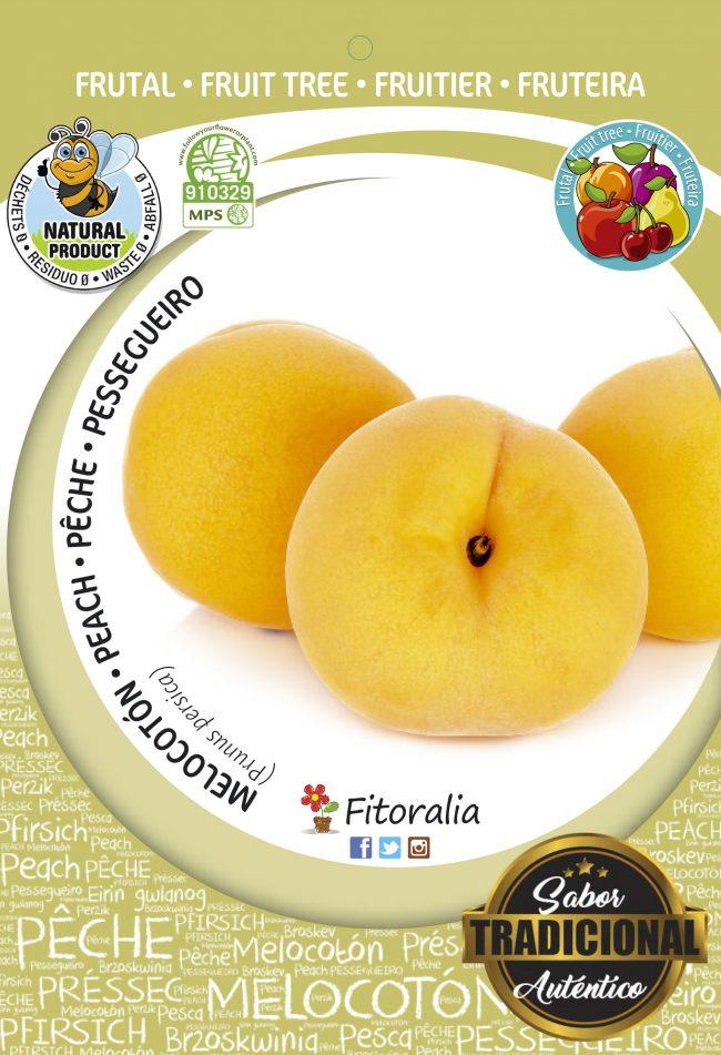 Melocotón Sudanell M-25 - Prunus persica