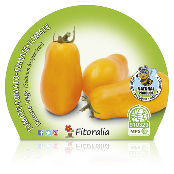Tomate Banana Legs M-10,5