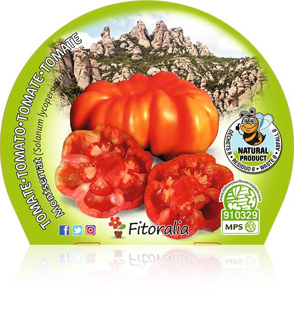 Tomate Montserrat M-10,5