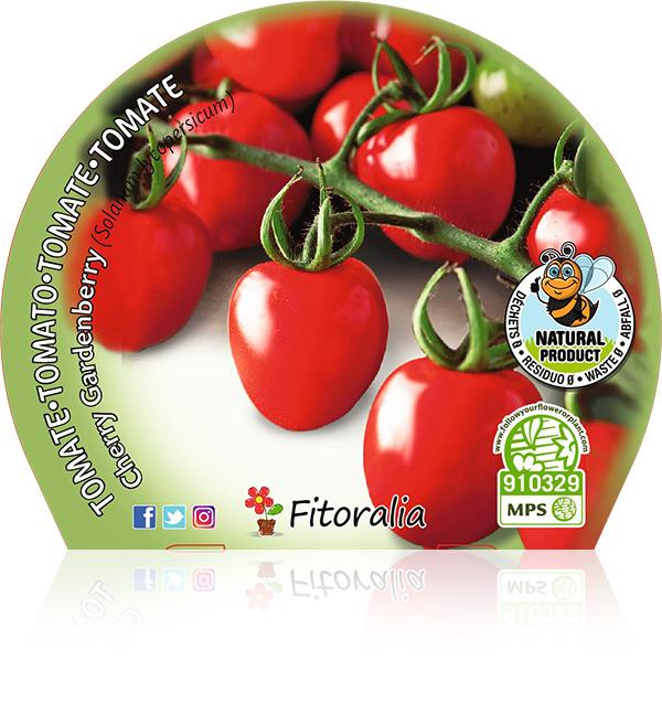 Tomate Cherry Gardenberry M-10,5