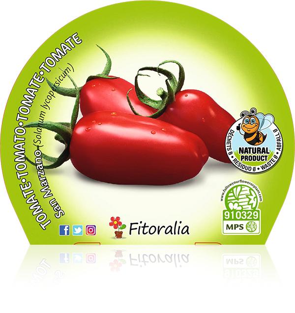 Tomate San Marzano M-10,5
