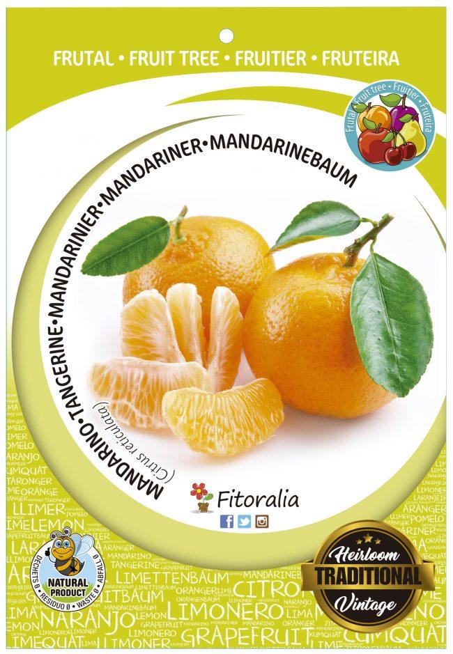 Mandarino M-25 - Citrus reticulata