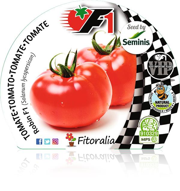 Tomate Robin F1 6 Ud. Solanum lycopersicon